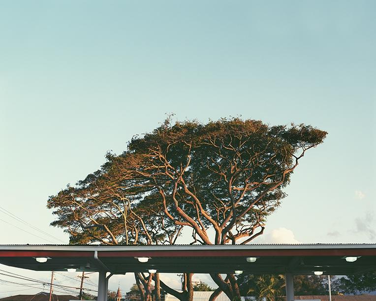 Hawai_17