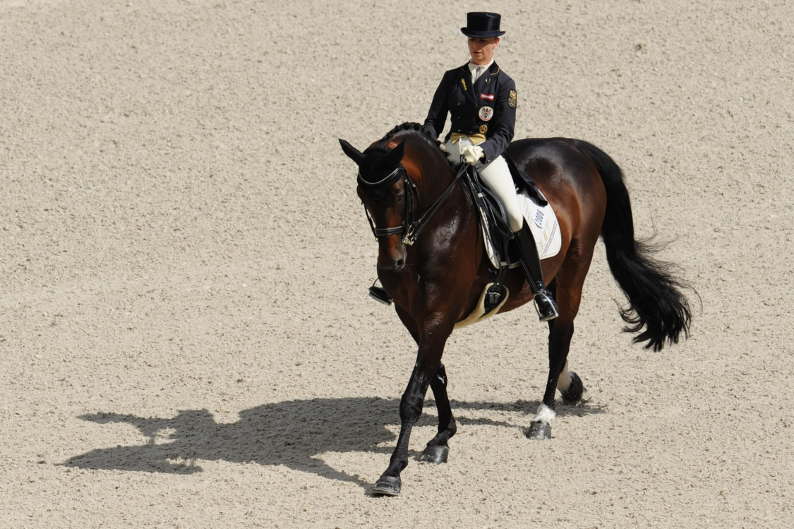 Aug29_FSdressage_11915