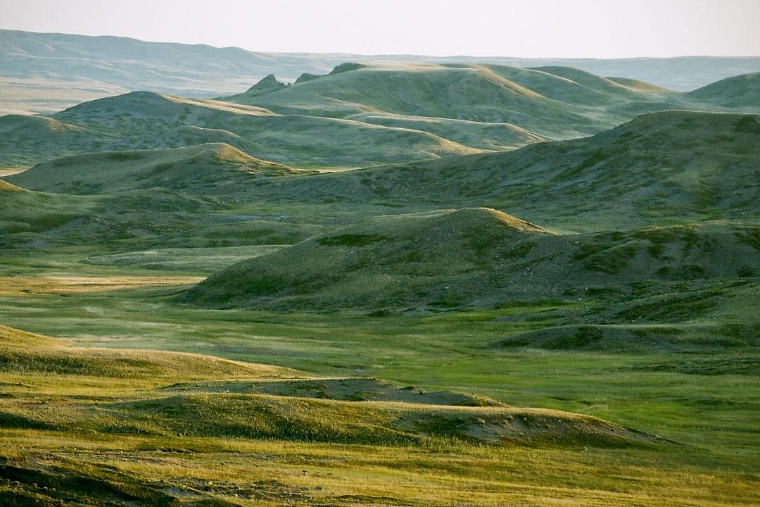 grasslands09_q5