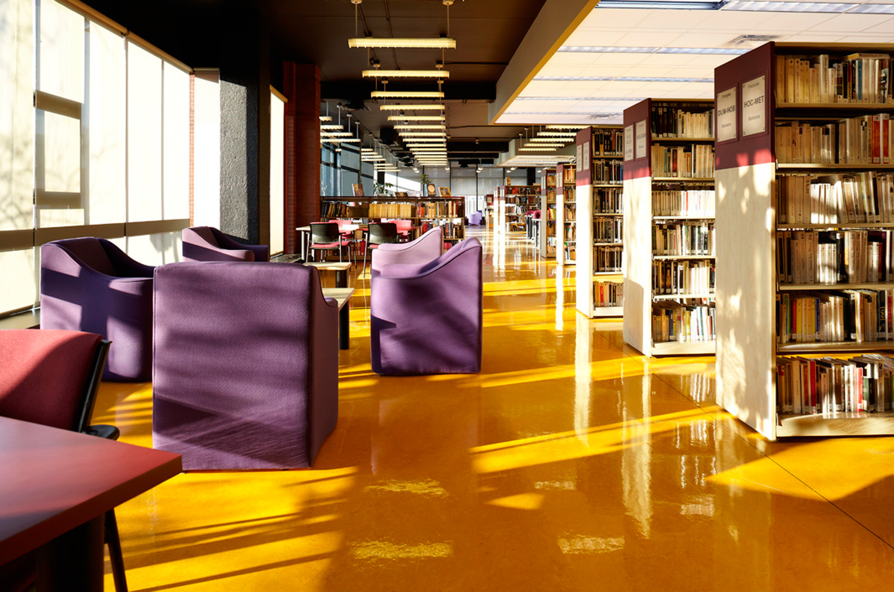 bibliotheque-montreal