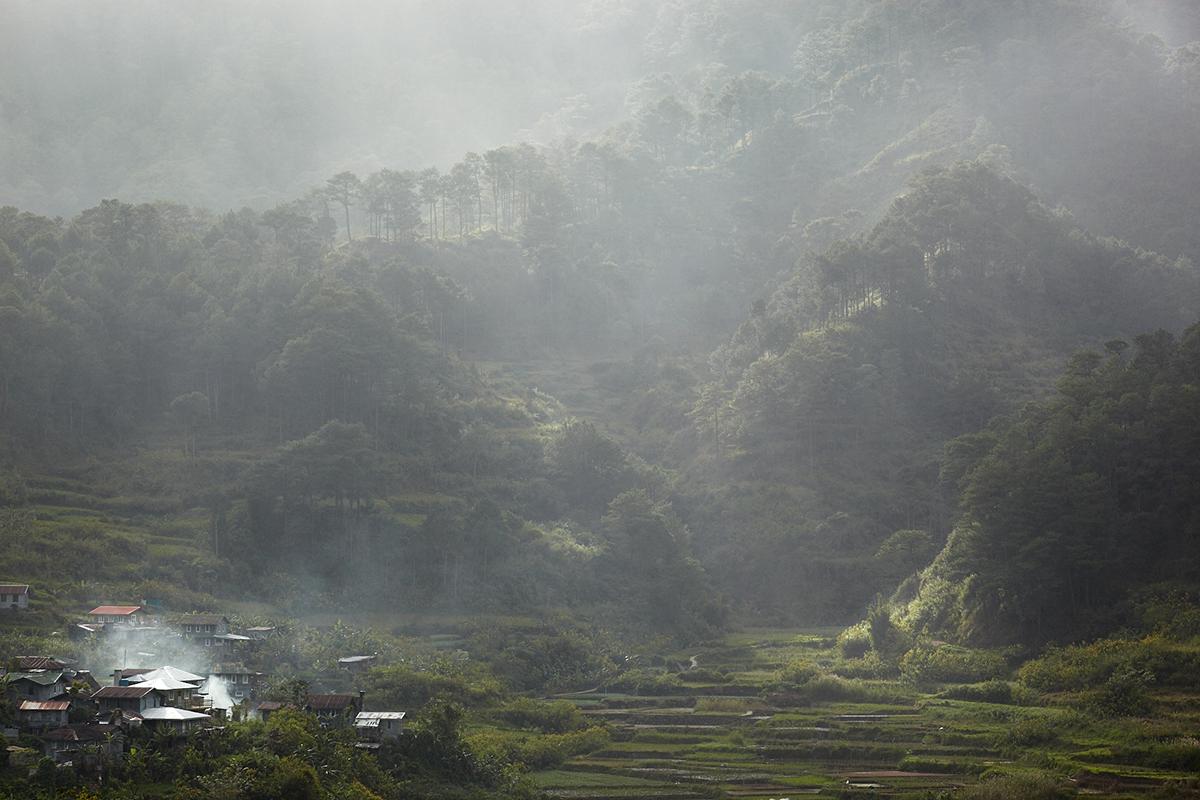 paysage-4