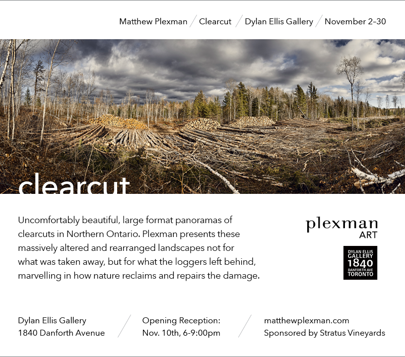 Clearcut Email v3